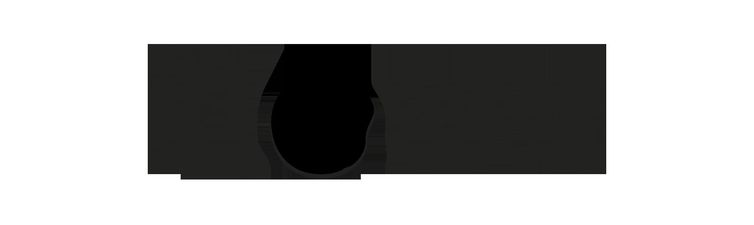flowe logo